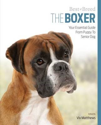 Boxer Best of Breed - pr_15925
