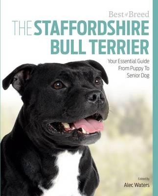 Best of Breed Staffordshire Bull Terrier - pr_409894