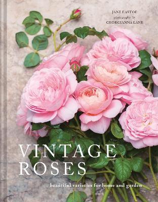 Vintage Roses -