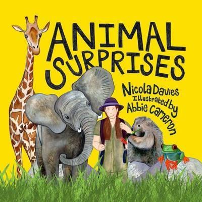 Animal Surprises -