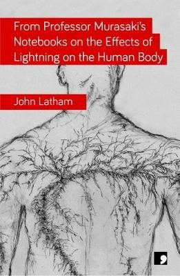 From Professor Murasaki's Notebooks on the Effects of Lightning on the Human Body -