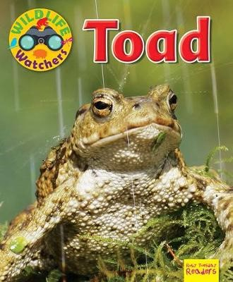 Wildlife Watchers: Toad - pr_71673