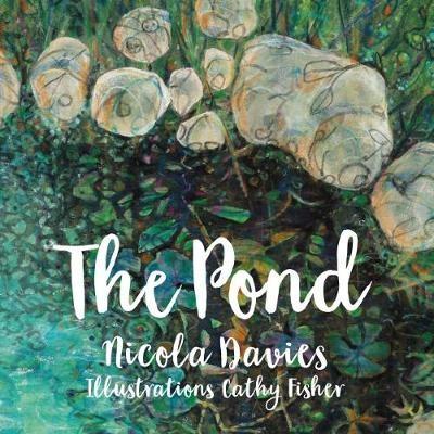 The Pond - pr_71555