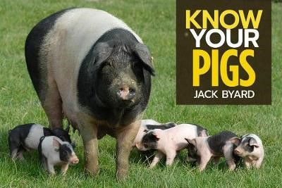 Know Your Pigs - pr_1754081