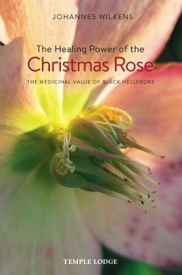 The Healing Power of the Christmas Rose -