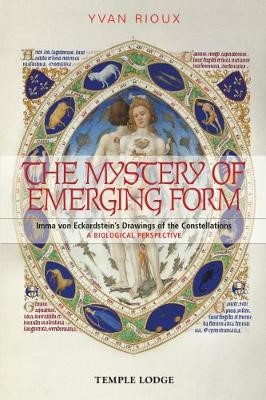 The Mystery of Emerging Form - pr_284822