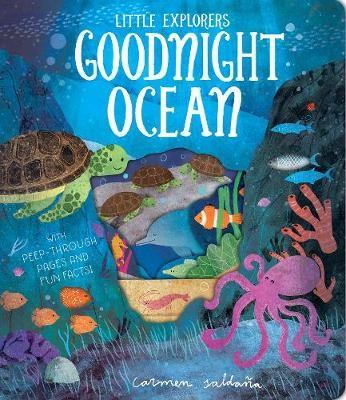 Goodnight Ocean - pr_310375