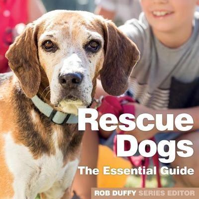 Rescue Dogs -
