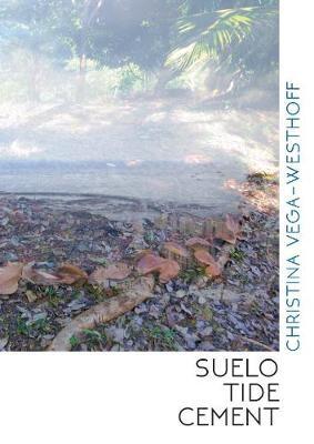 Suelo Tide Cement - pr_1856
