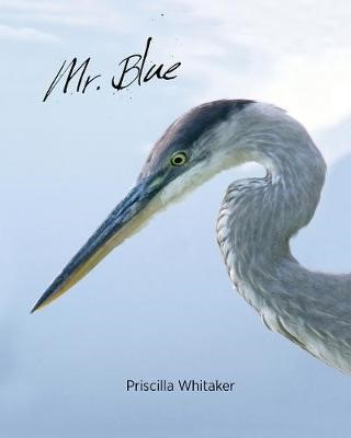 Mr. Blue -