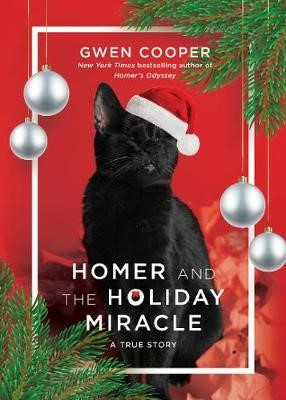 Homer and the Holiday Miracle - pr_367172