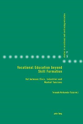 Vocational Education beyond Skill Formation -