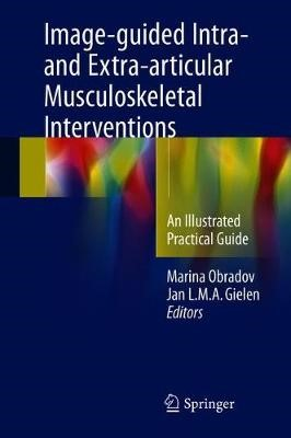 Image-guided Intra- and Extra-articular Musculoskeletal Interventions -