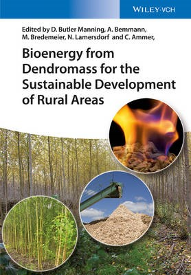 Bioenergy from Dendromass for the Sustainable Development of Rural Areas - pr_343678