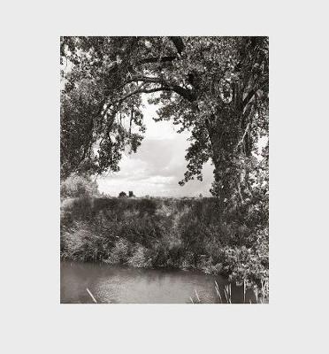 Robert Adams: Cottonwoods - pr_59843