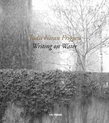 Writing on Water - pr_1701205