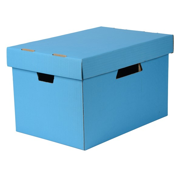 Esselte Archive Storage Box & Lid Blue -