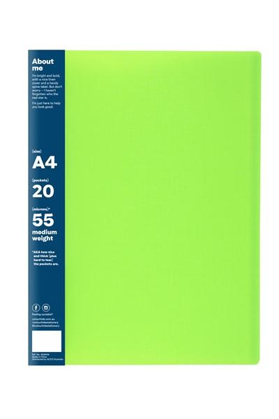 Colourhide Wingman Display Book A4 20 Pocket Green - pr_1702214
