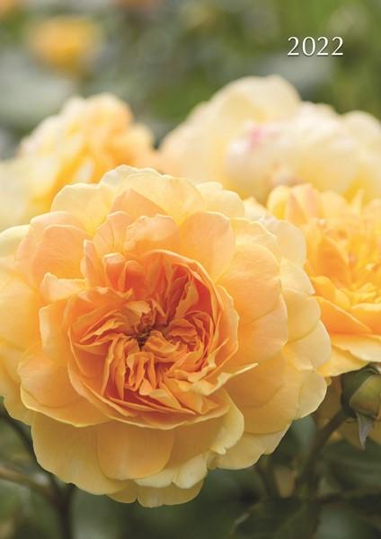 Roses 2022 Padded Diary -