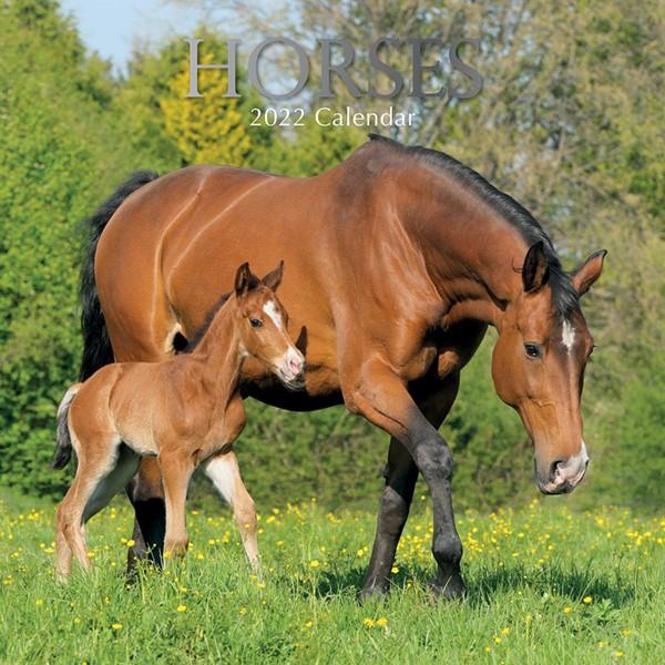 2022 Square Calendar Horses -