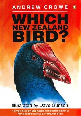 Which New Zealand Bird? - pr_419216