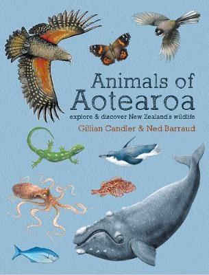 Animals of Aotearoa: Explore & Discover New Zealand's Wildlife -