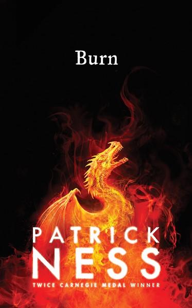 Burn - pr_1837938