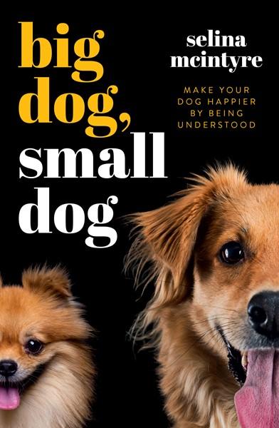 Big Dog Small Dog -