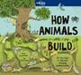 How Animals Build - pr_119983