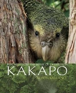 Kakapo: Rescued from the brink of extinction - pr_422078